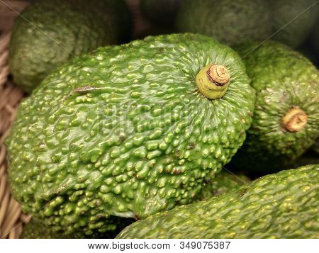 Fresh Green Avocados Or Persea Americana Ready For Sale. Tropical Avocados Fruits On Market Stall.