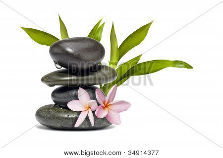 Spa Still Life With Flowers And Green Leafs