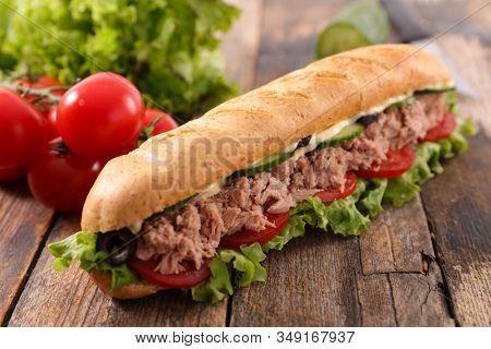 sandwich- bread with tuna fish, tomato, cucumber, salad and sauce