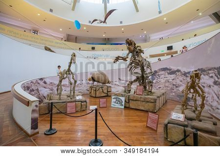 Cordoba Argentina January First Floor Of Natural Science Museum That Houses Prehistoric Animal Skele