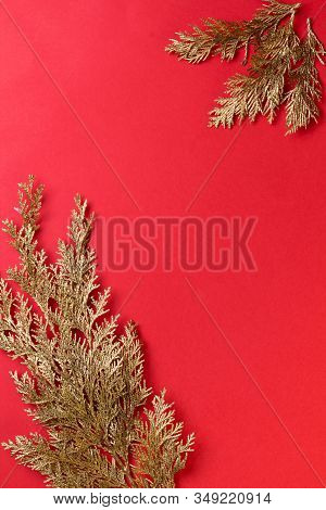 Golden Branch On Red Background. Copy Space.