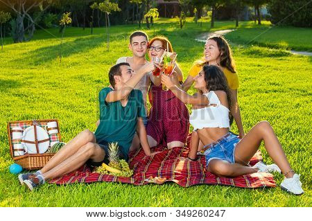 Young Friends Drinking Cocktails On Picnic Party.