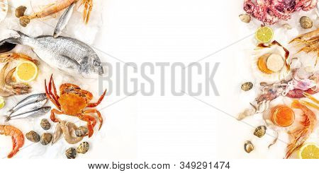 Fish And Seafood Panorama, A Flat Lay Overhead Shot With Copy Space On A White Background. Fresh Fis