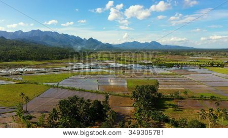 Paddy Fields In The Philippines. Mountain Landscape With Green Hills And Farmland. Summer And Travel
