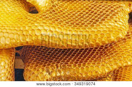 Bee Wax - Bee Frames Of A Bee Hive