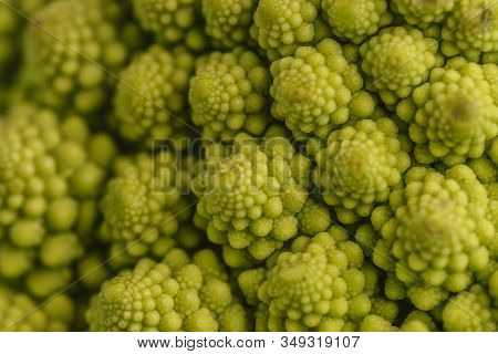 Close-up Of The Perversions Of A Broccoli Of The Romanescu Variety, With Green Color That Fills The