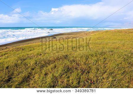 Windswept Coastal Grasslands On The Beach Taken In The Rural Northern California Coast