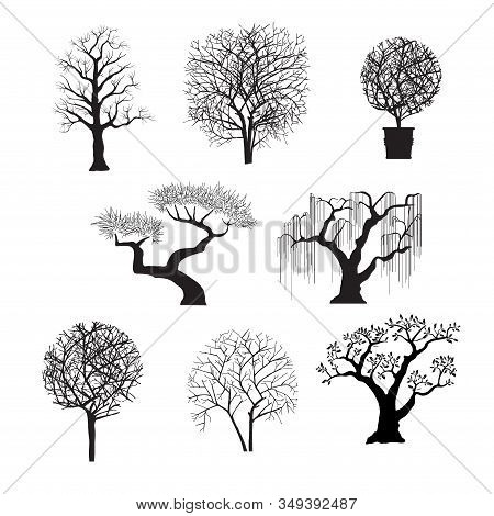 Tree Silhouettes For Design Of Stock Illustration