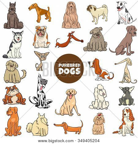 Cartoon Illustration Of Purebred Dogs And Puppies Pet Animal Characters Large Set