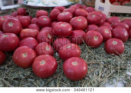 Large Ripe Red Tomatoes Lie On A Bed Of Hay At The Organic Market. Summer Season