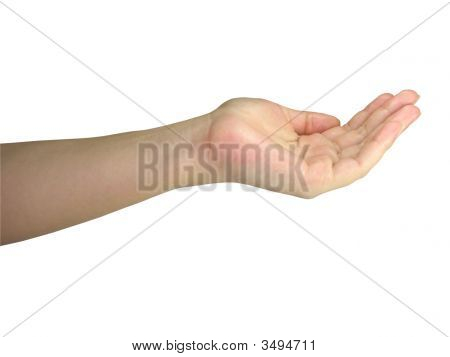 Human Lady Hand Holding Your Object Isolated Over White