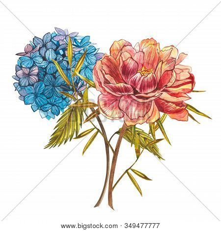 Watercolor Bouquet With Piones And Hidrungea. Wild Flower Set Isolated On White. Botanical Watercolo