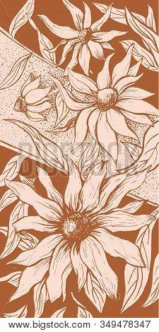 Flowers Floral Background, Aster Blossom Ornate Floral Decoration Vintage Art Design. Echinacea Blos