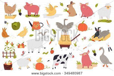 Big Set Of Funny Cute Farm Animals