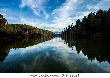 Lake With Wonderful Reflection. Reflection Of Pine Tree In A Lake.