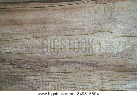 Abstract Art Antique Wood Texture