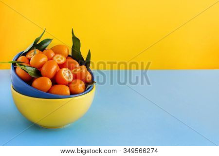 Kumquat Fruits In Bows On A Blue And Yellow Background