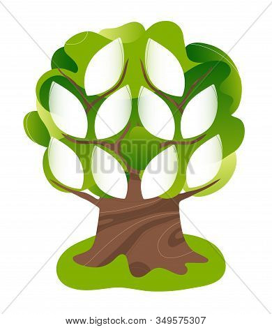 Family Genealogical Tree With Blank Space For Photo In The Shape Of Leaves. Flat Modern Trendy Style
