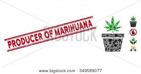 Mosaic Cannabis Pot Icon And Red Producer Of Marihuana Rubber Print Between Double Parallel Lines. F