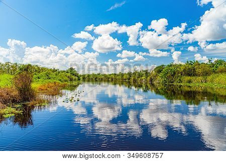 Everglades Wetland In Florida, Everglades And Francis S. Taylor Wildlife Management Area