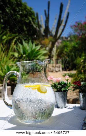 Water Pitcher In Southwest
