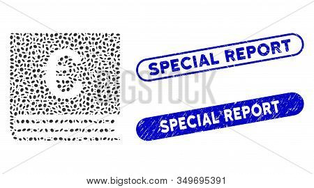 Mosaic Euro Bookkeeping Book And Distressed Stamp Watermarks With Special Report Caption. Mosaic Vec
