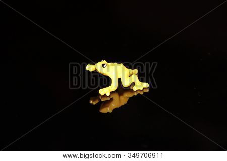Yellow Toad On A Black Background. Toy Toad