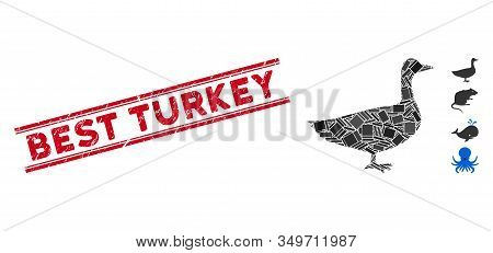 Mosaic Goose Pictogram And Red Best Turkey Seal Stamp Between Double Parallel Lines. Flat Vector Goo