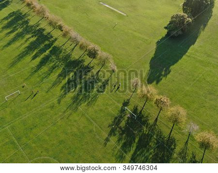 Aerial View Of Parkland With A Line Of Trees Casting Long Shadows In The Evening