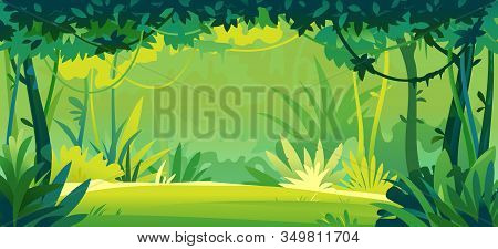 Small Sunny Lawn In Wild Jungle Forest With Trees, Bushes And Lianas, Nature Landscape With Green Ju