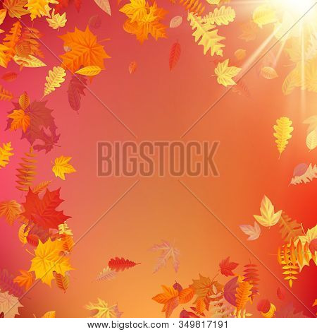 Autumn Template Layout Decorate With Leaves. Eps 10