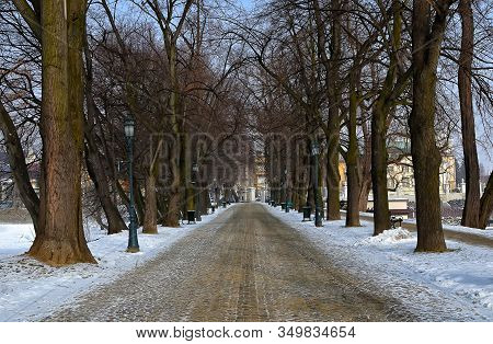 Winter Street In Park Rzeszow City Poland