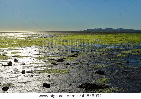 Sunny Morning Dublin Bay In Sandymount Irishtown Nature Park