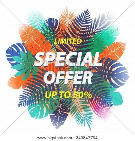 Special Offer Label Design For Poster, Leaflet, Placard, Newsletter, Promotion With Tropical Leaves.