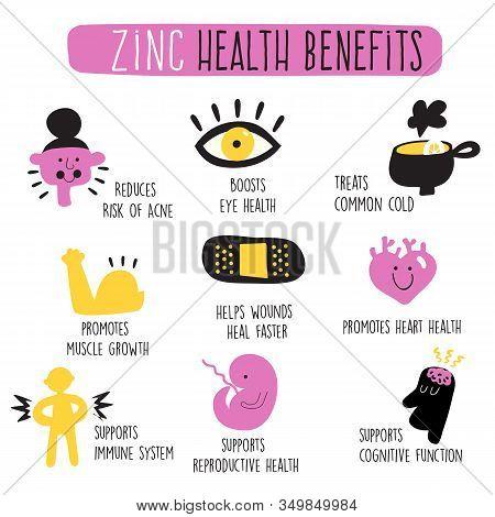 Zinc Health Benefits. Infographics. Vector Cartoon Illustration