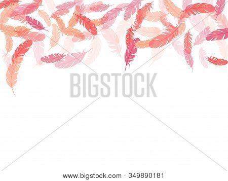 Minimalist Pink Flamingo Feathers Vector Background. Fluffy Twirled Feathers On White Design. Plumag