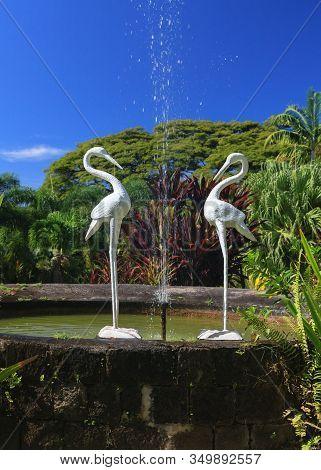 Basseterre, St Kitts - November 5:  The Gardens Of Romney Manor Are Pictured On November 5, 2013. Th