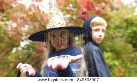 Little Witch Showing Toy Spider Into Camera, Arachnophobia, Fear On Halloween