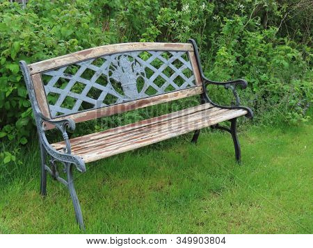 Empty Wooden Bench With Decorative Cast Iron Backrest On A Green Lawn Of A Park On Sunny Spring Day