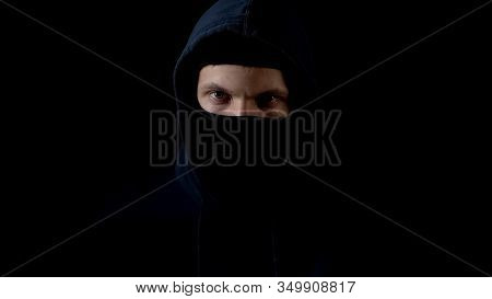 Hooded Serious Criminal In Balaclava Looking At Camera, Piercing Glance, Concept