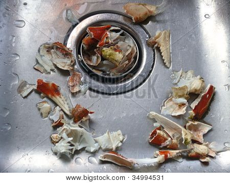 stainless steel sink with crab debris