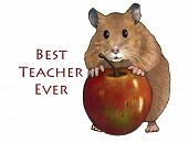 "cute hamster holding a big, red apple along with the words ""Best Teacher Ever"". poster"