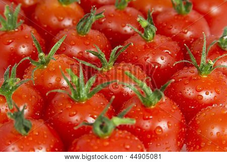Cherry Tomatoes with Water Droplets