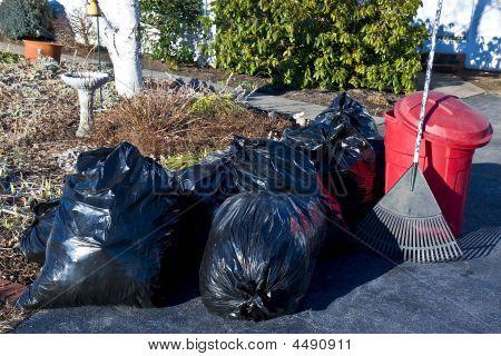 Yard Cleanup1