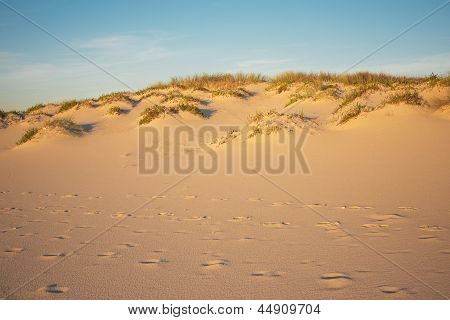 Footprints and Dunes landscape