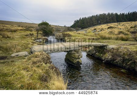 Walla Brook On Dartmoor