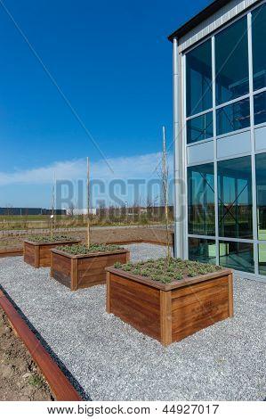 Raised Garden Bed In Modern Garden
