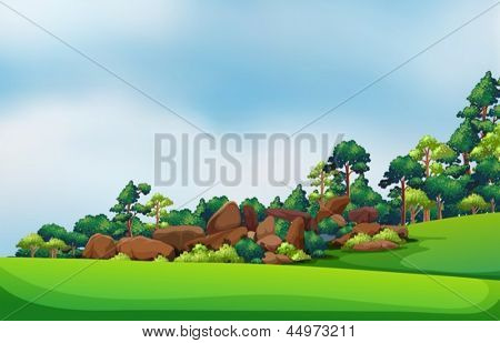 Illustration of the rocks at the forest