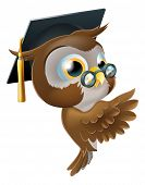 Illustration of a happy cute wise old owl leaning or peeking round a sign and pointing at it poster