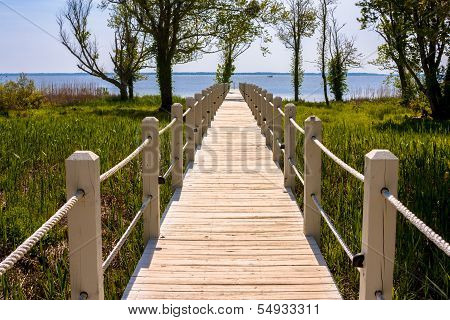 Walkway To The Ocean